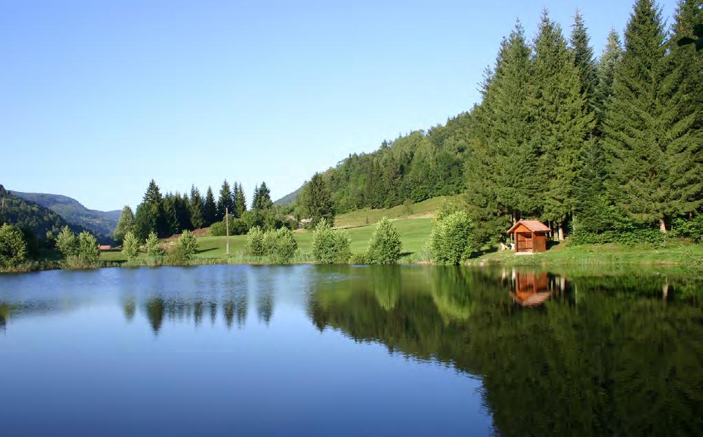Séjour Au coeur des Vosges1